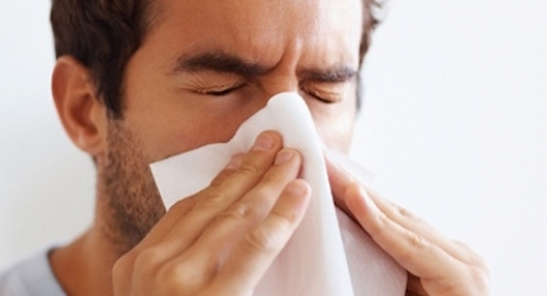 allergy air purifiers